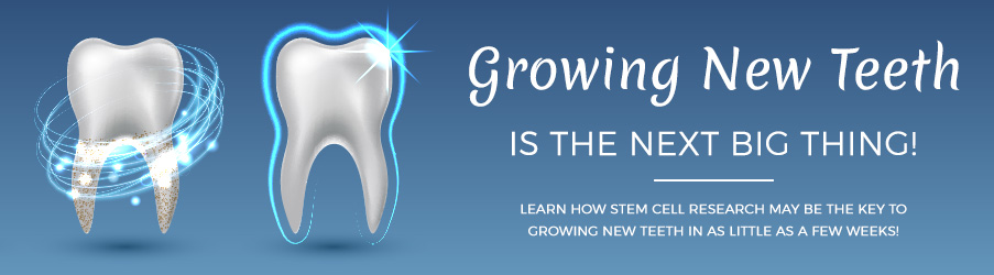 Growing New Teeth is the Next Big Thing